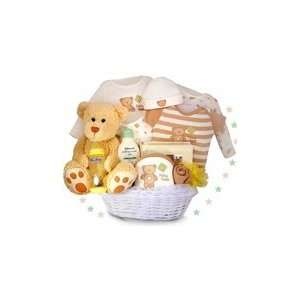My First Teddy Bear Deluxe Baby Gift Basket Everything