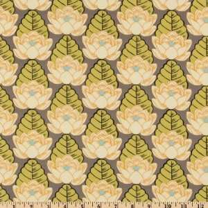 45 Wide Amy Butler Lotus Pond Ivory Fabric By The Yard amy