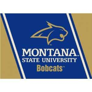 Montana State Bobcats 5 x 8 Team Door Mat: Sports & Outdoors