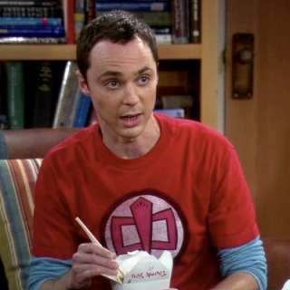 Sheldons Greatest American Hero Big Bang Theory T Shirt