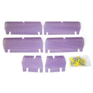 Screen Kit Arctic Cat Purple Automotive