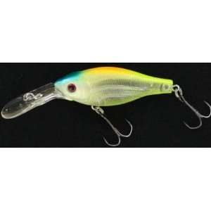 Megabass Fishing Lure Deep X 100 Skeleton Chart Ii:  Sports