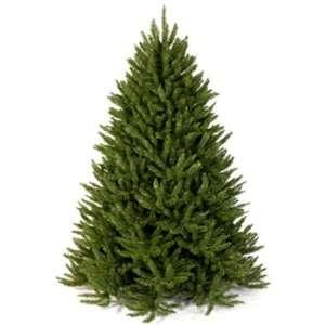 Frasier Fir Artificial Christmas Tree   9 Green