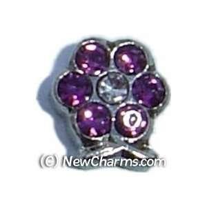 Flower Birthstone February Floating Locket Charm Jewelry
