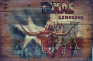 Western Cabin Rustic Decor Texas Star Longhorn Wood Picture Hanging