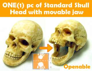 Hot Custom 1/6 Scale Toys Skull Head with Movable Jaw