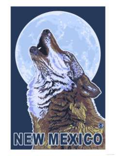 Gray Wolf Howling   New Mexico Posters at AllPosters
