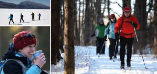 enjoy the quiet beauty of winter on a cross country skiing excursion