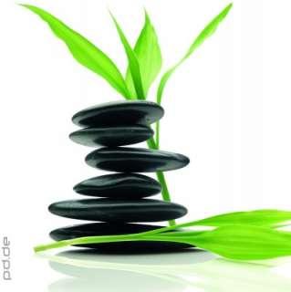 Glasbild Feng Shui Balance Zen Buddha Buddhismus Entspannung Natur