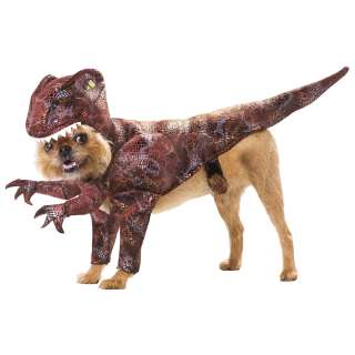 Animal Planet Raptor Dog Costume   Dog Costumes