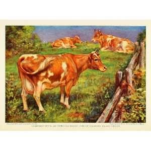 Dairy Farming Edward Herbert Miner Herd Animal   Original Color Print