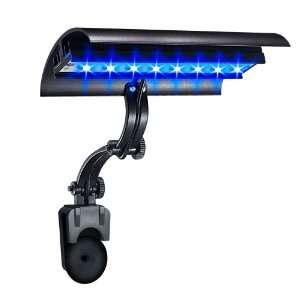 point 6 Inch 8 Watt Super Blue Micro Sun LED High Output Clamp Light